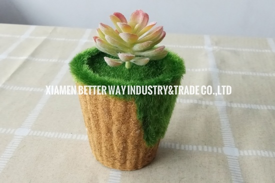 artificial succulent plants